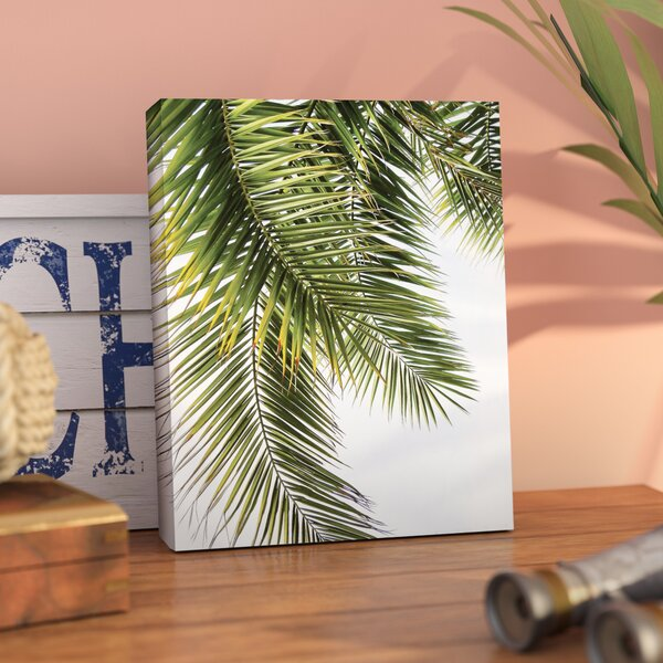 Bay Isle Home 'palm Leaves' Graphic Art Print On Canvas & Reviews by Bay Isle Home