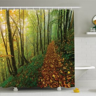 National Parks Home Surreal Foggy Deep in Forest Eco Path Full of Leaves Landscape Shower Curtain Set