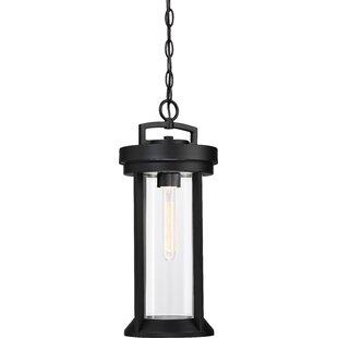 Winston Porter Mauch 1-Light Hanging Lantern
