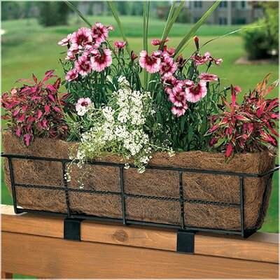 Canterbury Steel Rail Planter CobraCo