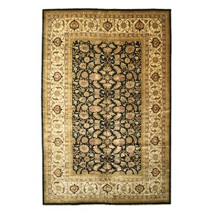 Look for Palghar Hand-Knotted Black/Beige Area Rug ByMeridian Rugmakers