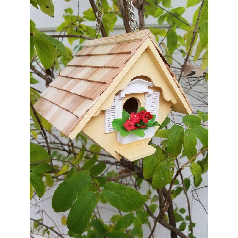 Home Bazaar Fledgling Series Little Wren House 6 5 In X 8 In X 6 Inbirdhouse Wayfair
