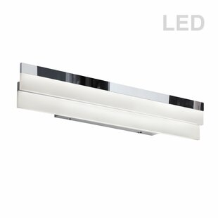 Orren Ellis Crater 1-Light LED Bath Bar