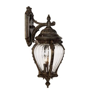 Find Pursell 3-Light Outdoor Wall Lantern By Charlton Home