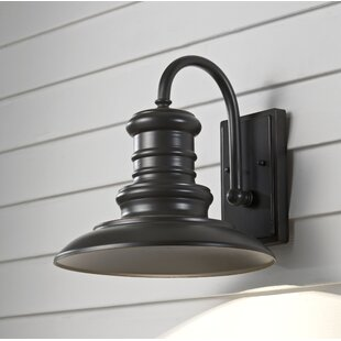 Colunga 1-Light Outdoor Barn Light by Brayden Studio