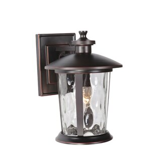 Longshore Tides Irasville 1-Light Outdoor Wall Lantern