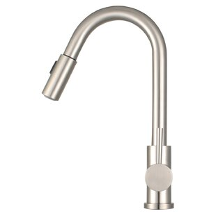 Morgana Pull Down Single Handle Kitchen Faucet