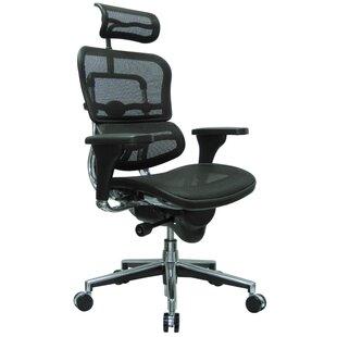 Best Reviews Ergohuman Mesh Desk Chair by Eurotech Seating