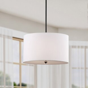 Ebern Designs Paylor 4-Light Pendant