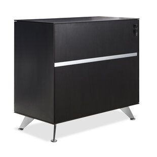 Bergerson 2 Drawer Lateral File Cabinet