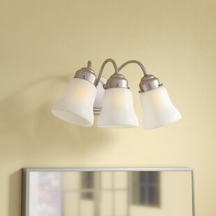 Darmstadt 3-Light Glass Shade Vanity Light by Three Posts