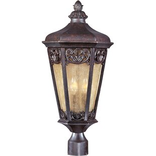 Affordable Price Wimbish Outdoor 3-Light Lantern Head By Fleur De Lis Living