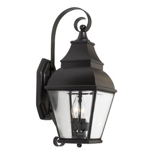 Darby Home Co Pinevalley 2-Light Outdoor Wall Lantern