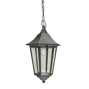 Aelia Outdoor Hanging Lantern By Marlow Home Co.