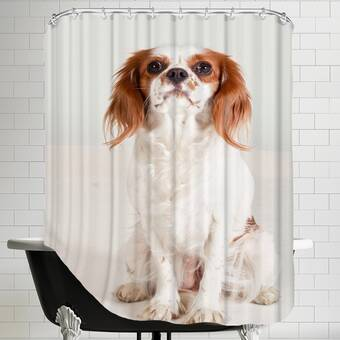 East Urban Home Shiny Single Shower Curtain Reviews Wayfair