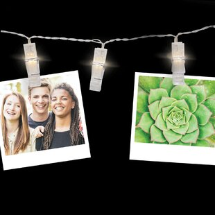 Turn on the Brights Rowley 4.5 ft. 24-Light Novelty String Lights (Set of 2)