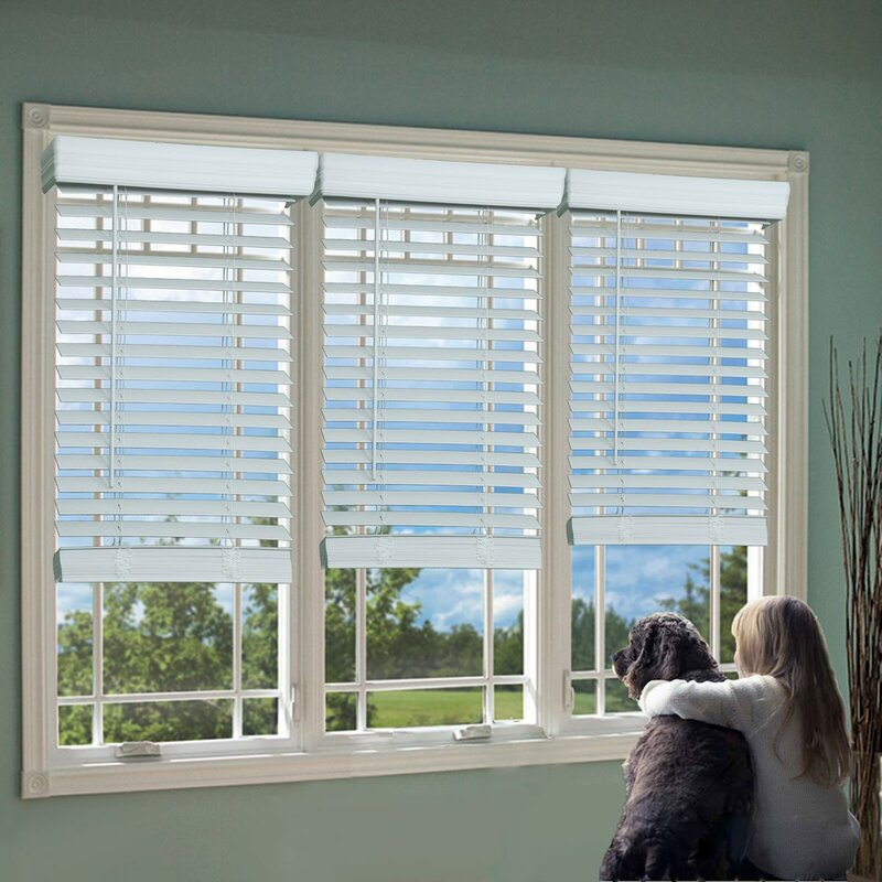 Image result for window blinds