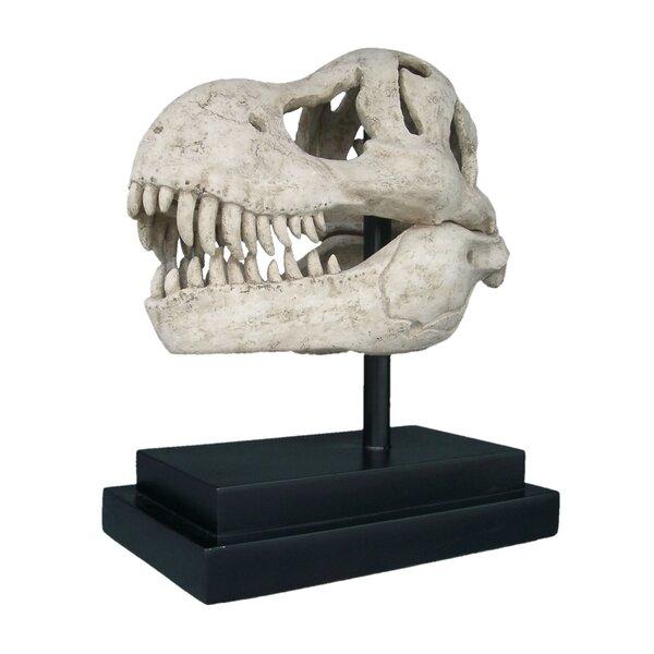 Design Toscano T Rex Dinosaur Skull Fossil On Museum Mount