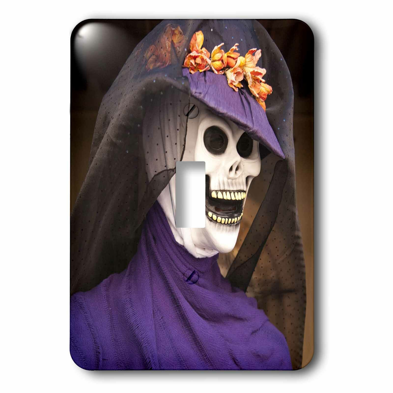 3drose Mexico Oaxaca Day Of The Dead Skeleton 1 Gang Toggle Light Switch Wall Plate Wayfair