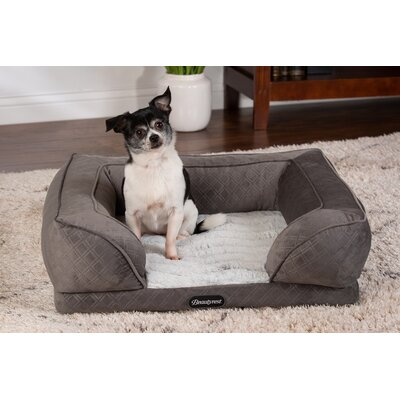 Memory Foam Amp Orthopedic Dog Beds You Ll Love In 2019