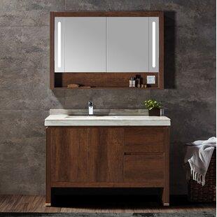 Affordable Price Adamson 40 Single Bathroom Vanity Set with Mirror ByBrayden Studio