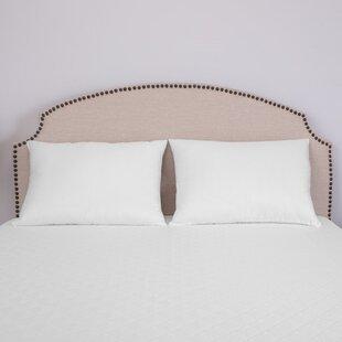 BioPEDIC UltraFresh® Jumbo Bed Polyfill 20