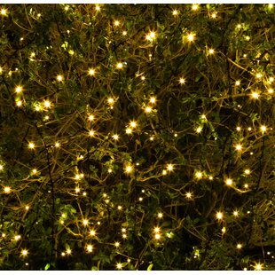 Chilmark Multi Function Fairy Lights By The Seasonal Aisle