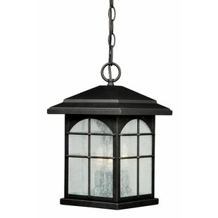 Where buy  Feeley 3-Light Outdoor Hanging Lantern By Charlton Home