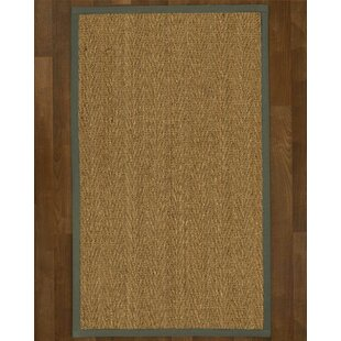 Calla Hand-Hooked Brown Area Rug by Breakwater Bay