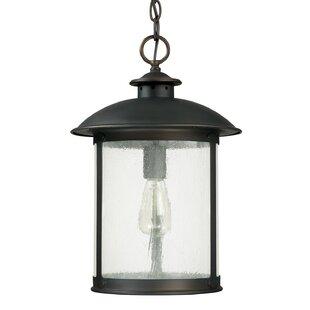 Gracie Oaks Calvin 1-Light Old Bronze Outdoor Hanging Lantern