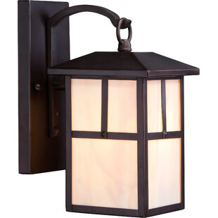 Looking for Raci 1-Light Outdoor Wall Lantern By Loon Peak