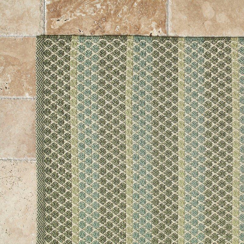 Hayes Sage Indoor/Outdoor Rug & Reviews | Birch Lane