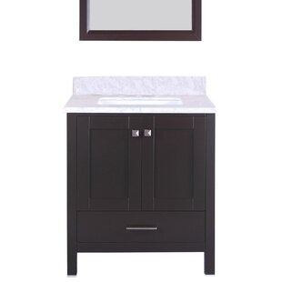 Great Price Arnab Transitional 30 Single Bathroom Vanity Set By Latitude Run