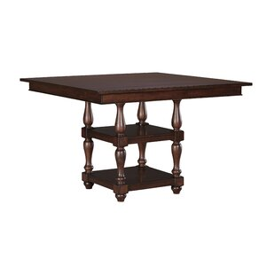 Darby Home Co Cara Square Counter Height Dining Table