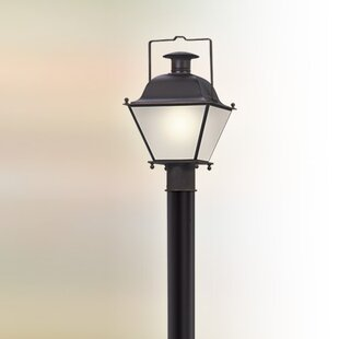 Darby Home Co Oakgrove 1-Light Outdoor LED Lantern Head