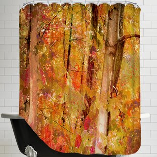 Fall Forest Single Shower Curtain