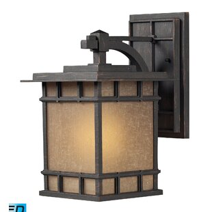 Buying Sandia Crest 1-Light Outdoor Sconce By Loon Peak