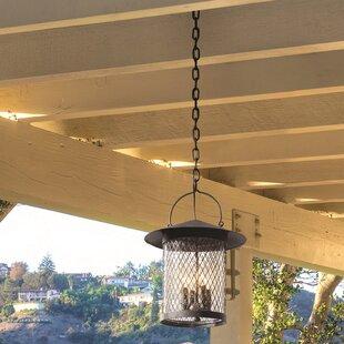 Darby Home Co Sylvester 4-Light Outdoor Pendant