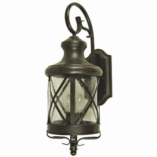 Forestburgh 4-Light Outdoor Wall Lantern by Darby Home Co