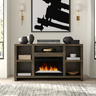Best Price Columbia TV Stand for TVs up to 65 with Fireplace by Greyleigh Reviews (2019) & Buyer's Guide