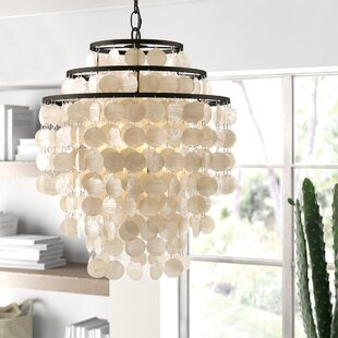 Kilwin 4-Light Novelty Chandelier by Bungalow Rose