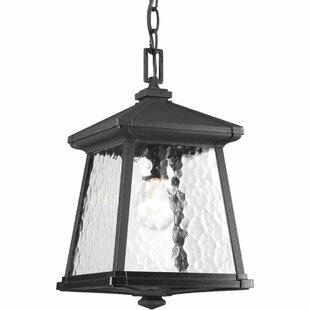 Alcott Hill Triplehorn 1-Light Hanging Black Lantern