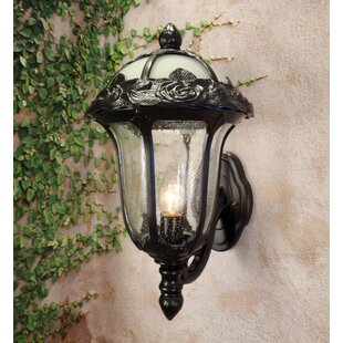 Rose Garden 1-Light Outdoor Sconce
