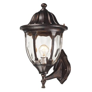 Amy 1-Light Outdoor Sconce