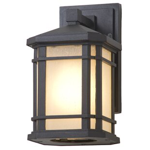 Lybarger 1-Light Outdoor Wall Sconce by Millwood Pines