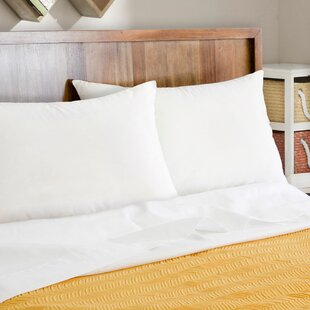 Alwyn Home Natural Plus Wick Away Talalay Latex and Polyfill Queen Pillow (Set of 2)