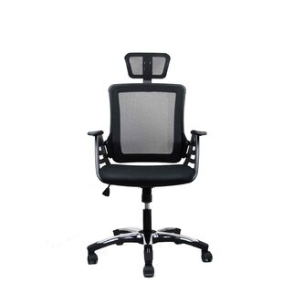 Mesh Task Chair by Techni Mobili Great price