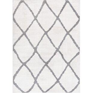 Patterson Modern Moroccan Trellis Gray Area Rug