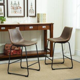 Phenomenal Bamey Bar Counter Stool Set Of 2 Bralicious Painted Fabric Chair Ideas Braliciousco