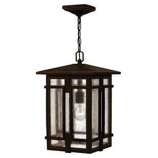 Hinkley Lighting Tucker 1-Light Outdoor Hanging Lantern